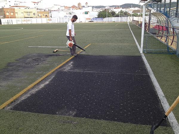 Césped Campo de fútbol